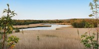 £18 -- Wetlands Nature Reserve: Entry & Afternoon Tea for 2