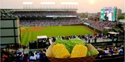 $69-$86 -- Cubs Rooftop w/Food & Drinks into June