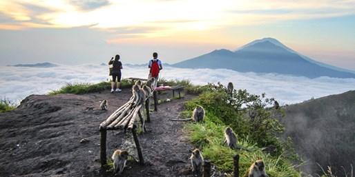 $49 & up -- Bali: #1-Rated Mt. Batur Volcano Trek, Save 63%