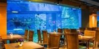 ¥228起 -- 全新开业 亲子好去处!广州正佳海底美人鱼餐厅单人自助晚餐 儿童享半价