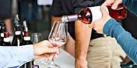 $28 -- Admission to TASTE Wine Fest in Prince Edward County