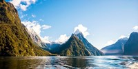 $126pp -- Milford Sound Glassroof Coach Tour & Cruise