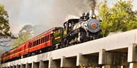 $20 -- Texas State Railroad Scenic Train Ride, Reg. $35
