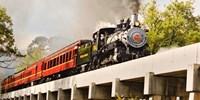 $20 -- Texas State Railroad Scenic Train Ride, Reg. $35