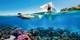 ¥29,998起 -- 温暖春节 品质小团!澳洲直飞11日纯玩 1-2天自由+大堡礁+美食+精选航班