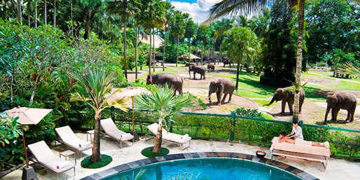 $555 -- 3 Nts. at Award-Winning Ubud Elephant Safari Lodge
