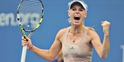 $19 and up -- Andy Roddick, Caroline Wozniacki & Mardy Fish