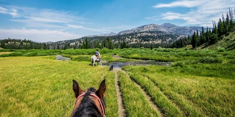$1199 -- Wyoming: All-Inclusive 2-Night Ranch Stay for 2