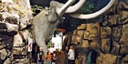 $9.50 -- Admission for 2 to Columbia Gorge Discovery Center