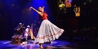 $92 -- Cirque du Soleil Dinner Show in Riviera Maya