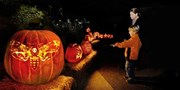 Chicago Botanic Garden: Night of 1,000 Jack-o'-Lanterns