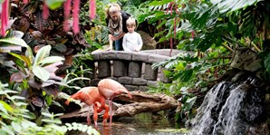 $21 -- Victoria Butterfly Gardens Visit for 2, Reg. $35