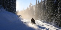 $149 -- Guided Snowmobiling in the Rockies, Reg. $249