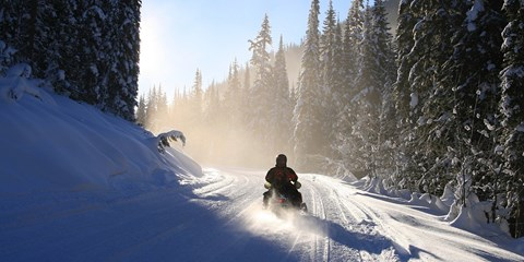 $149 -- Snowmobile Excursion in The Rockies, Reg. $249