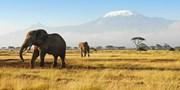 £1709pp -- Kenya Safari & All-Inc Zanzibar, from Birmingham
