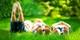 """春游踏青 亲手拍一部""""萌娃出游记""""! 影像专家索尼为你支招【会员福利】独家 """"¥500 溜娃红包""""等你拿"""