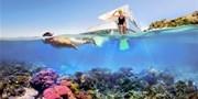 $1699 -- Great Barrier Reef Trip w/Luxe Stay &