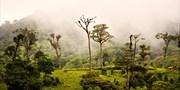 $1649 & up -- Costa Rica Rainforest Adventure w/Air