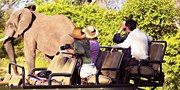 $2339 & up -- South Africa Trip w/Safari & River Cruise