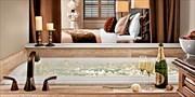 $129 -- Luxe North Carolina Hotel near Biltmore, Save 35%
