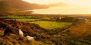 $1498 -- Ireland 10-Night, 6-City Escorted Tour Package