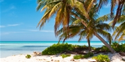 Cayman Islands: Deals for Summer; Save up to 40%
