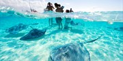 Escape to the Cayman Islands: Save up to 40%