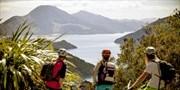 New Zealand: Adventures through Auckland & Beyond