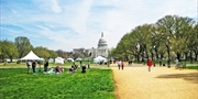 Summer Savings in the Nation's Capital, 55% Off