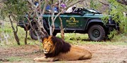 $3999 -- South Africa 5-Star Safari, 28 Cities at $2160 Off
