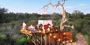 $4899 -- Africa 5-Star Adventure w/Treehouse Stay, $4000 Off