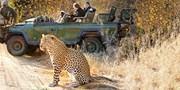 $3999 -- South Africa 5-Star Safari; 38 Cities at $2320 Off