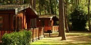 £159 & up -- New Forest Lodges for 2-6 Guests, Save 20%
