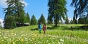 ab 360 € -- Wanderwoche in Südtirol mit HP und Rittencard