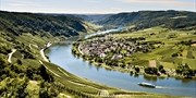 $2405 -- Luxe Rhine River Cruise w/Drinks, Tips & Tours