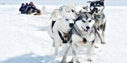 $1199 -- Canadian Arctic Adventure w/Ottawa Air, Save $2950