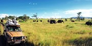 $999 -- NYC to Johannesburg, South Africa (R/T, w/Tax)