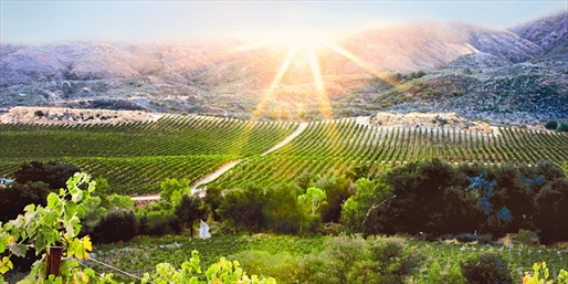 $199 -- Temecula Wine Country 4-Star Villa Escape, Reg. $434