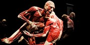 $19 -- 'Body Worlds: Pulse' in Times Square, 40% Off