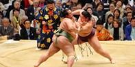 ¥1,335起 -- 观赏相扑比赛+尝豪华三段式午餐一日游 感受日本国技的力量 大阪出发