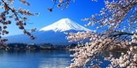 ¥315 -- 限时特惠7折【东京出发】河口湖眺望冠雪富士绝景+御殿场奥莱一日游