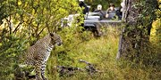 $3999 -- 5-Star South Africa Safari; 28 Cities at $2830 Off