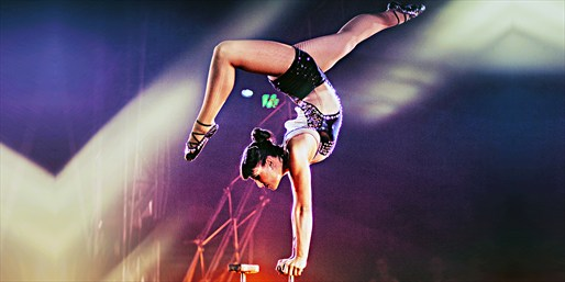 $19 -- Circus Vargas Shows: 'Magikaria Extreme,' 40% Off