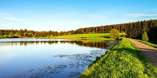 149 € -- 4 Sommertage im Harz, neues Spa & Halbpension, -40%