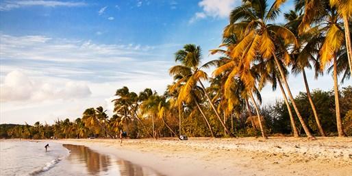 ab 1399 € -- 14 Tage Karibik-Kreuzfahrt, bis 600 € sparen