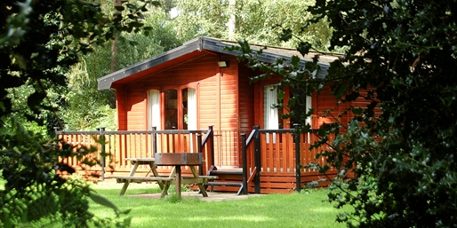 £180 & up -- Last Min: Forest Lodge for up to 6, Save 50%