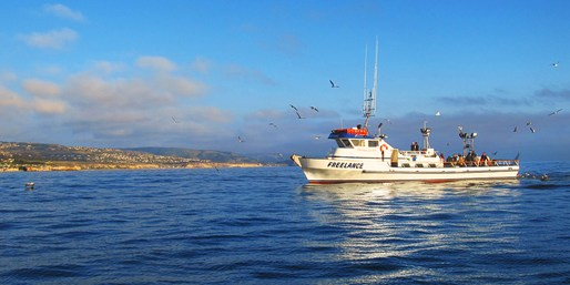 $20 -- Newport Deep Sea Fishing Trip, Reg. $42