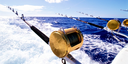 $22 -- Jersey Shore Deep Sea Fishing thru Summer, Reg. $45