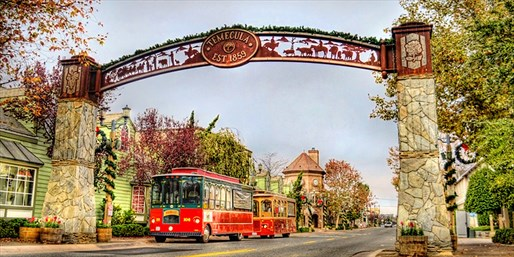 40% Off Old Town Temecula Holiday Trolley Tour w/Mulled Wine