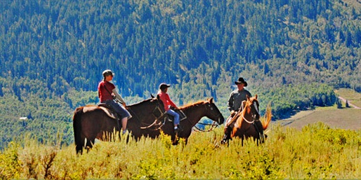 $29 -- Guided Mountain Horseback Trail Ride, Reg. $60